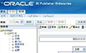 Oracle ERP产品图片