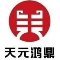 天元鸿鼎咨询集团