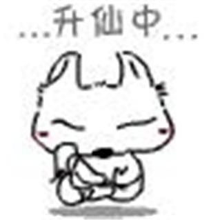 yaoyao8482
